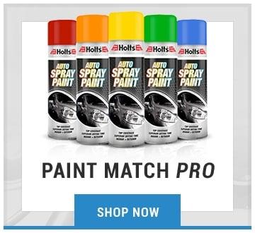Paint Match Pro